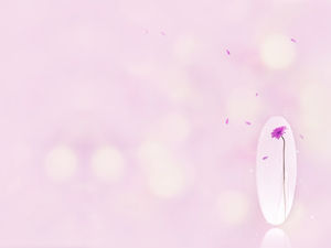 A purple flower with petals on a pink background image