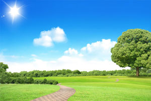 Download 920 Background Biru Hutan HD Gratis