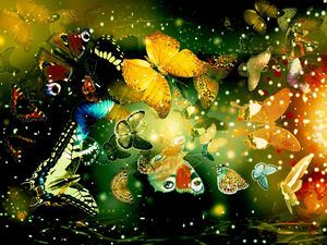 Butterflies flying ppt background pictures
