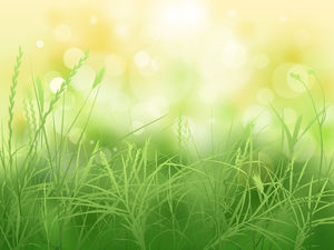 Vector green grass spot ps synthetic yellow background picture